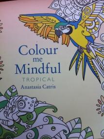Colour me mindful 6